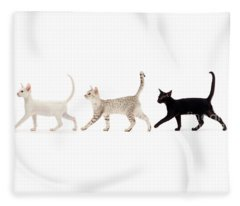 The Kits Parade - Three Fleece Blanket