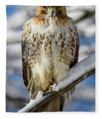 The Look, Red Tailed Hawk 1 Fleece Blanket