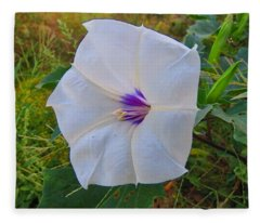 The Perfect Flower - Sacred Datura Fleece Blanket