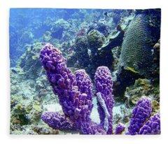 The Purple Sponge Fleece Blanket