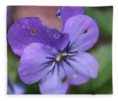The Raggedy Viola Fleece Blanket