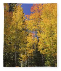 Fleece Blanket featuring the photograph The Road A Little Less Traveled by Rick Furmanek