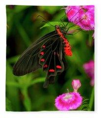 The Semperi Swallowtail Butterfly Fleece Blanket