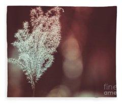 The Shine Fleece Blanket