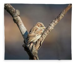 The Sparrow Fleece Blanket