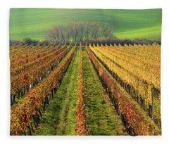 The Wine Line Fleece Blanket