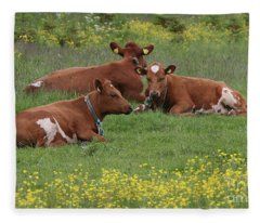 Three Cows Fleece Blanket