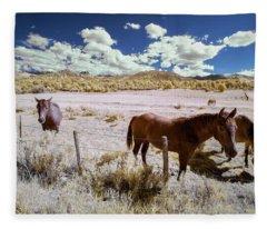 Three Horses In Colorado Fleece Blanket