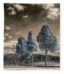 Three Kings Fleece Blanket