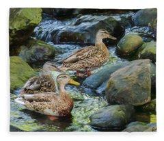 Three Mallard Ducks Swimming In A Stone Filled Brook. Fleece Blanket