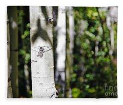 Through The Aspen Forest Fleece Blanket