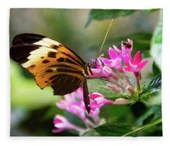 Tiger Longwing Butterfly Drinking Nectar  Fleece Blanket