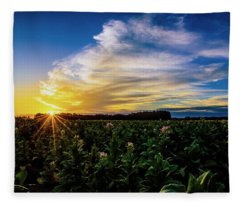 Tobacco Flowers At Sunrise Fleece Blanket