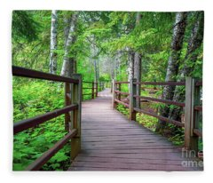 Trail At Gooseberry Falls Fleece Blanket