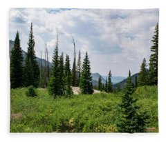 Trail To Gilpin Lake Fleece Blanket