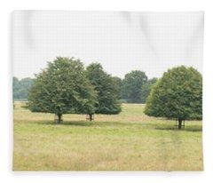 Tree Collection 3 Fleece Blanket