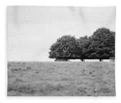 Tree Collection Photo 7 Fleece Blanket