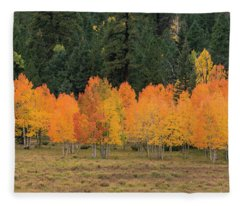 Tree Line Fleece Blanket