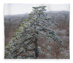 Tree With Hoarfrost Fleece Blanket