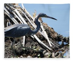 Tri-colored Heron 40312 Fleece Blanket