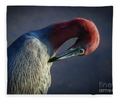 Tricolor Preening Fleece Blanket