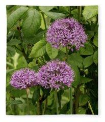 Triple Lavender Fleece Blanket