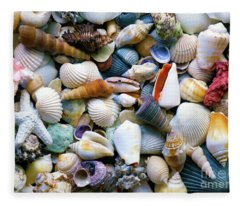 Tropical Treasure Seashells A91218 Fleece Blanket