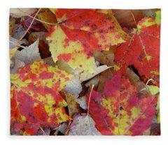 True Autumn Colors Fleece Blanket