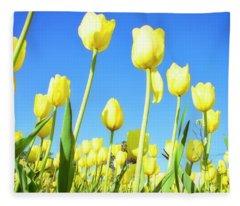 Tulips Holland Michigan 67 Fleece Blanket