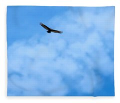 Fleece Blanket featuring the photograph Turkey Vulture In Flight by Judy Kennedy