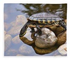 Turtle Drinking Water Fleece Blanket