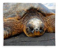 Turtle Rest Stop Fleece Blanket