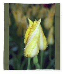 Twisted Yellow Tulip Fleece Blanket