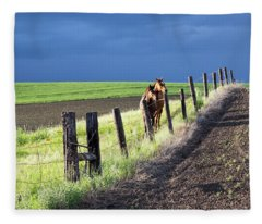 Two Horses In The Palouse Fleece Blanket
