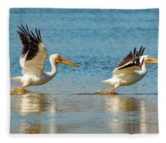 Two Pelicans Taking Off Fleece Blanket