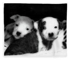 Two Sisters Fleece Blanket