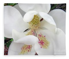 Unfolding Beauty Of Magnolia Fleece Blanket