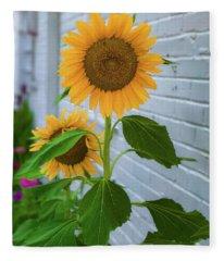 Urban Sunflower Fleece Blanket