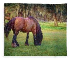 Vanner Swish Fleece Blanket