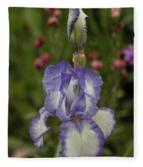 Variegated Iris In Lavender Fleece Blanket
