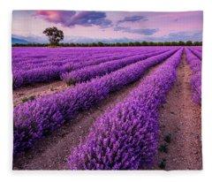 Violet Dreams Fleece Blanket