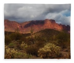 Fleece Blanket featuring the photograph Virgin Desert by Rick Furmanek