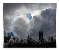 Fleece Blanket featuring the photograph Visions Beyond by Rick Furmanek