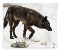 W47 Fleece Blanket