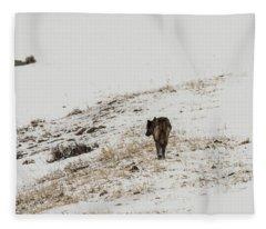 W52 Fleece Blanket
