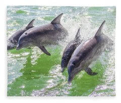 Wake Surfing Dolphin Family Fleece Blanket