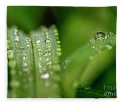 Water Drops On Leafs Fleece Blanket