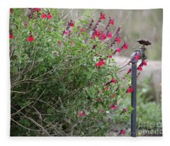 Water In The Garden Fleece Blanket