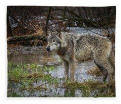 Wet Feet Fleece Blanket