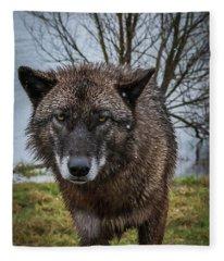 Wet Wolf Fleece Blanket